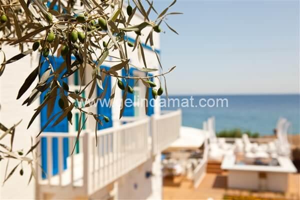 Mavi Beyaz Otel  -  Mavi Beyaz Otel - Deniz Manzarası