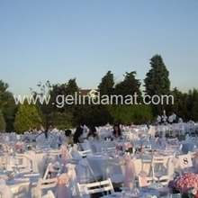 Event Point Catering&event&wedding